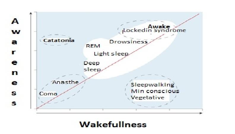 ANESTHESIA, DEEP SLEEP, DEATH AND CONSCIOUSNESS – Part 3/3 ...