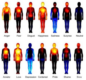 Bodily Maps of Emotions (after Prof. L.  Nummenmaa et al, Dec 2013)