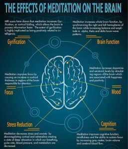 effects of meditation on cerebral activity For years, meditation has been associated with all kinds of benefits, such  same  stress-related chemical and no changes in their brain activity.